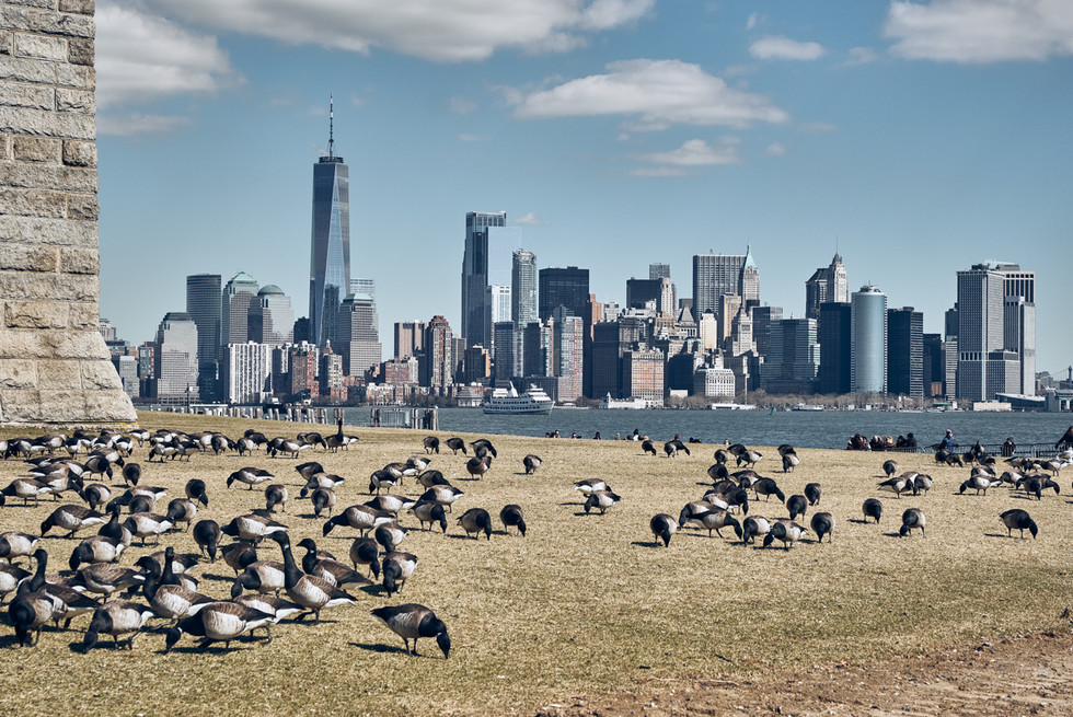 USA / New York City / 06.03.2018 /  View from Liberty Island to Manhattan.