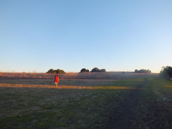 fieldoneleg.jpg