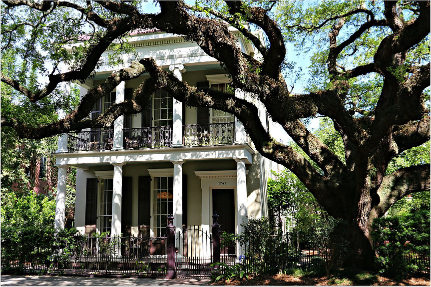Coliseum_Street_Tree_and_Historic_Home.j