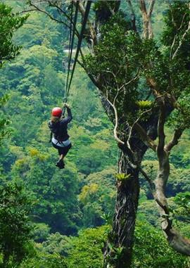 Ziplining-canopy-costa-rica.jpg