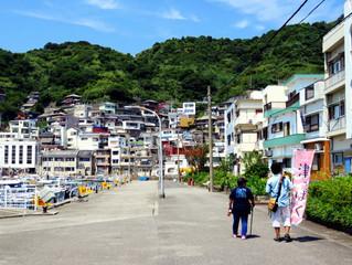 津っぱくin保戸島『ぶらり島さんぽと ひゅうが丼作り体験』8月3日(土)開催