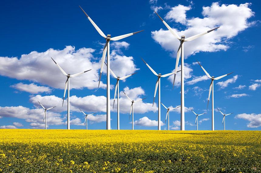 Power generating windmills.jpg