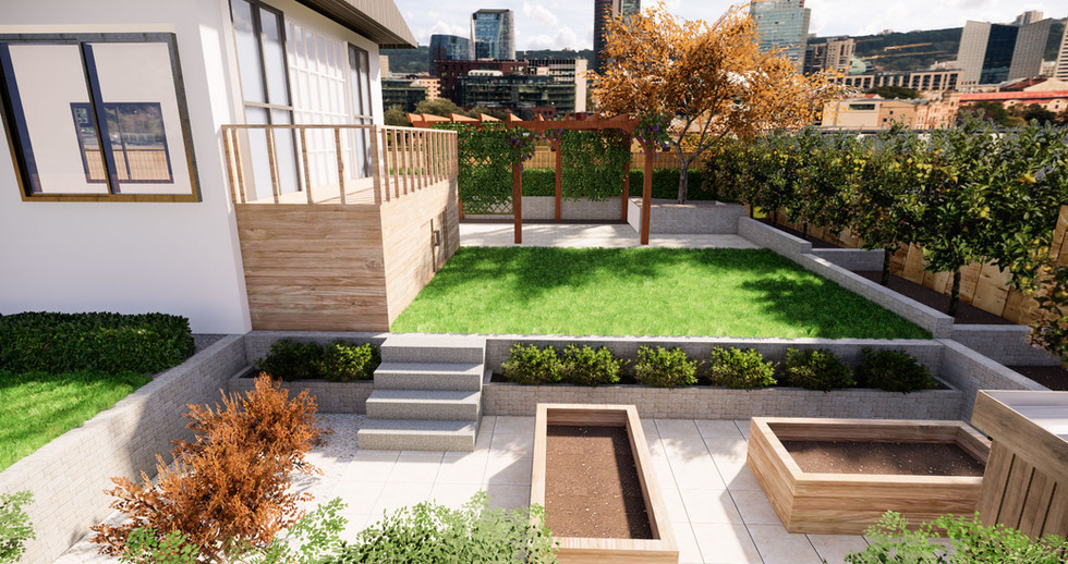 backyard overview.jpg