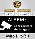 nova placa gold shield.png