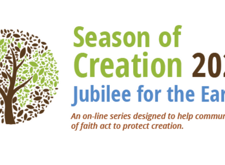 Gulf Coast Creation Care to host online series for Season of Creation