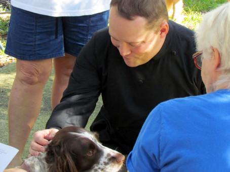 St. Francis Day Festival ~ Blessing of the Animals