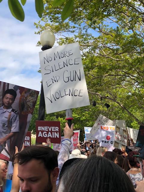 No more silence, end gun violence. Photo credit: Elizabeth MacWhinnie
