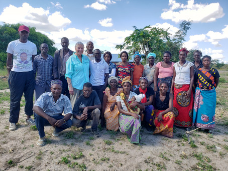 My Zambia Trip and the Baluba Healthcare Project