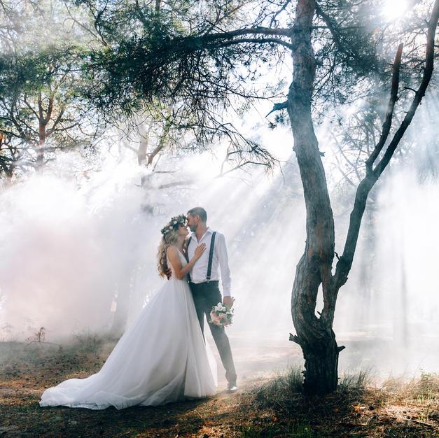 Foggy Forest Photoshoot