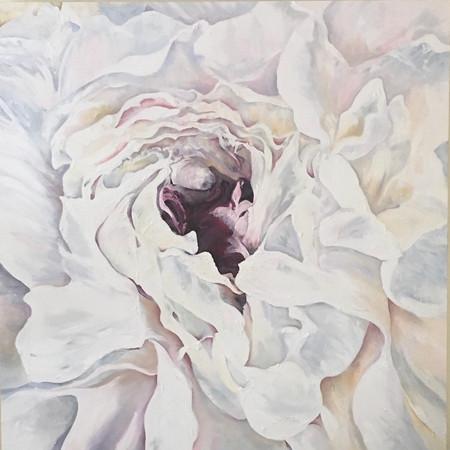 Peony- oil on canvas | 100cm x 100cm | Sold