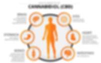 health-benefits-of-CBD_edited.jpg