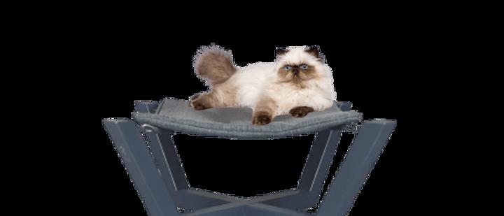 מרחב רביצה לחתול, ערסל מעוצב לחתולים