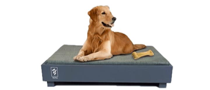 מיטה לכלב דגם ארד