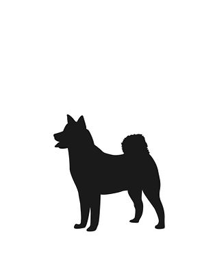 s_dog.jpg