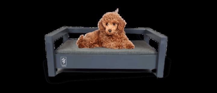 מיטה לכלב דגם ענבר