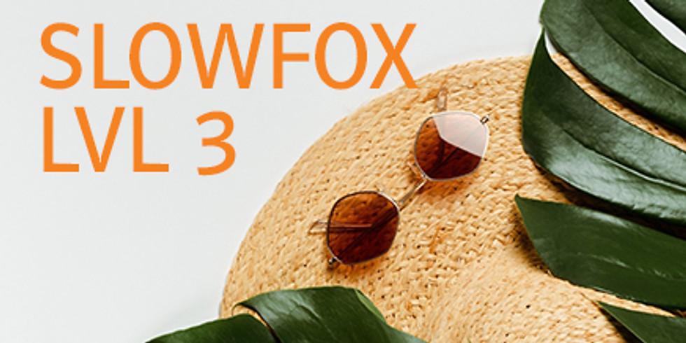 Slowfox Level 3 - Bad Vöslau - Figurenfolge 1