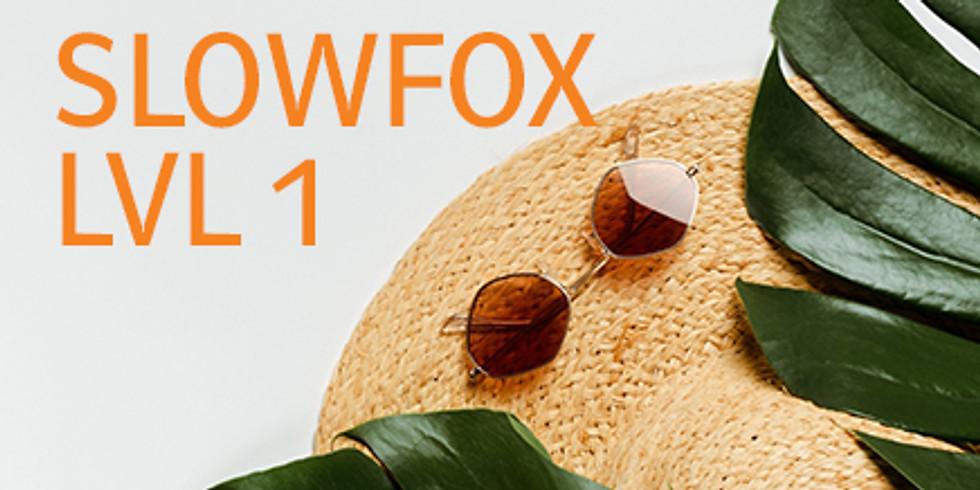 Slowfox Level 1 - Bad Vöslau - Anfängerkurs