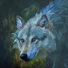 Wolf Love.jpg