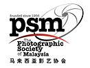 PSM Logo.jpg