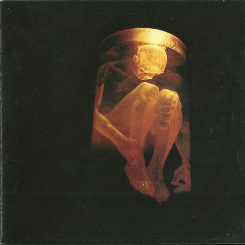 Alice In Chains – Nothing Safe: The Best Of The Box CD