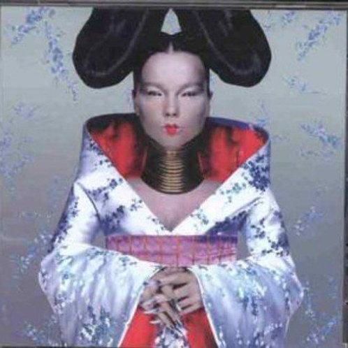 Björk – Homogenic