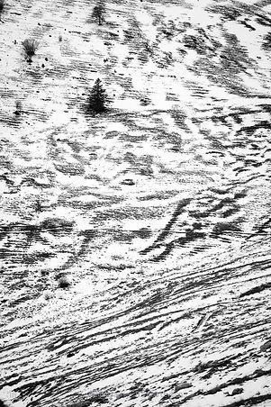 Graphic of snow.jpg