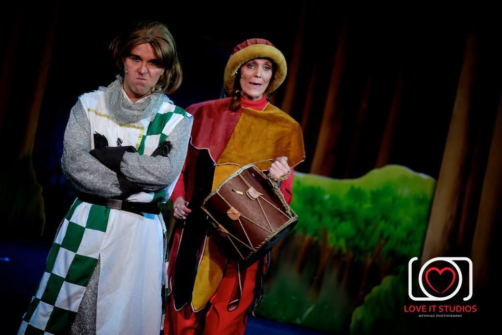 Robin & Minstrel