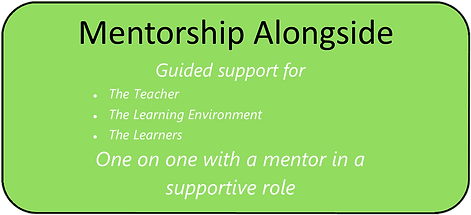Mentorship Alongside Button.png
