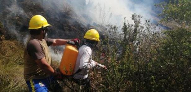 Incendio forestal arrasa con 200 hectáreas de pastos en Parque Nacional Huascarán