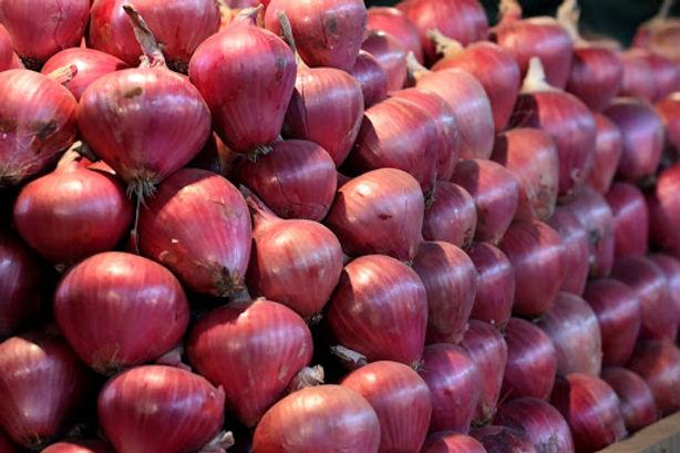 México sería el próximo mercado de la cebolla roja de los valles de la Irrigación Majes y La Joya