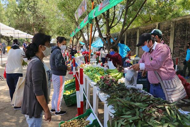 """Minagri lanza campaña """"Cómprale al agricultor peruano"""""""