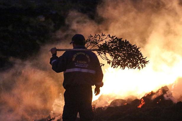 IGP alerta que incendios forestales se pueden incrementar en los Andes peruanos