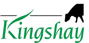 Kingshay High Res.jpg