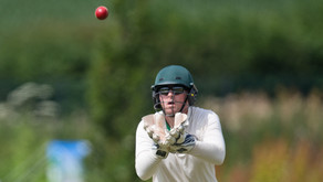 Second XI Avoid Relegation