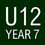 U12.jpg