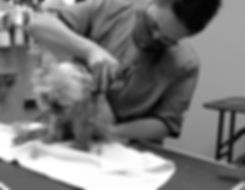 Dede grooming