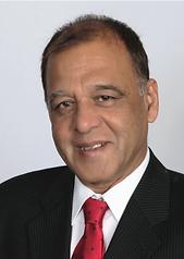Syed Mehdi Ashraf, P.E.
