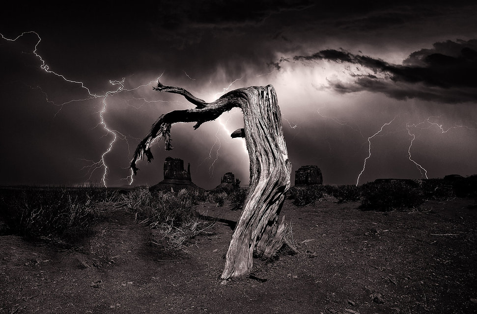 WP_MV Dead Tree_Lightning_MONO (1).jpg