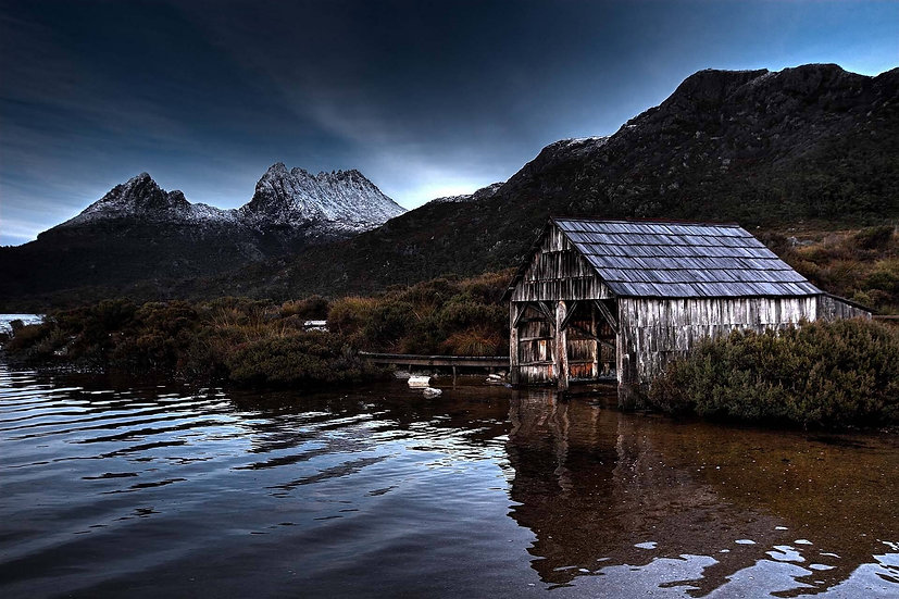 Lonely Shack