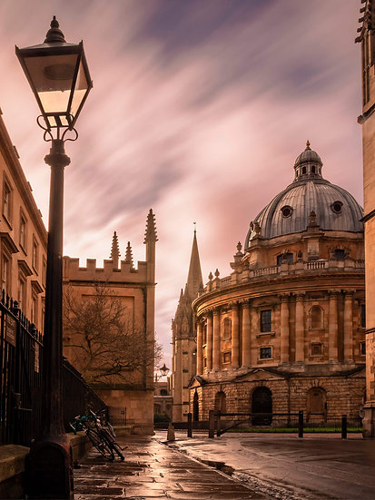 Oxford Library - LIMITED EDITION