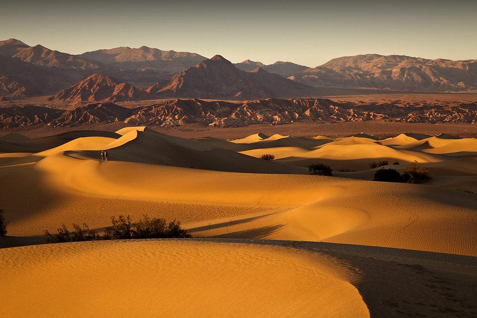 WP_Walking the Dunes.jpg