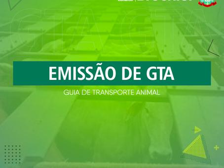Emissão de GTA