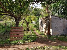 garden foto by Kim de Jong.jpg