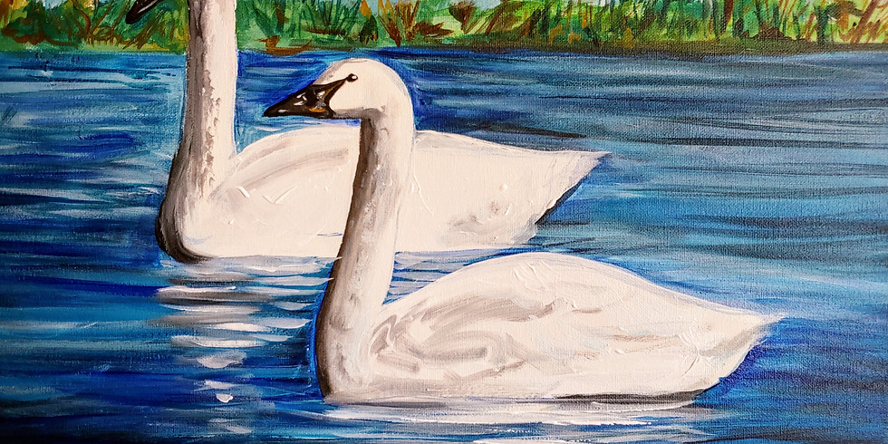 """""""Trumpeter Swans"""" @ Butter Cafe, Victor ID"""