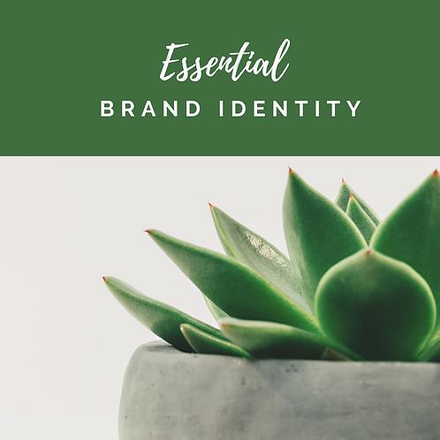 Essential Brand Identity