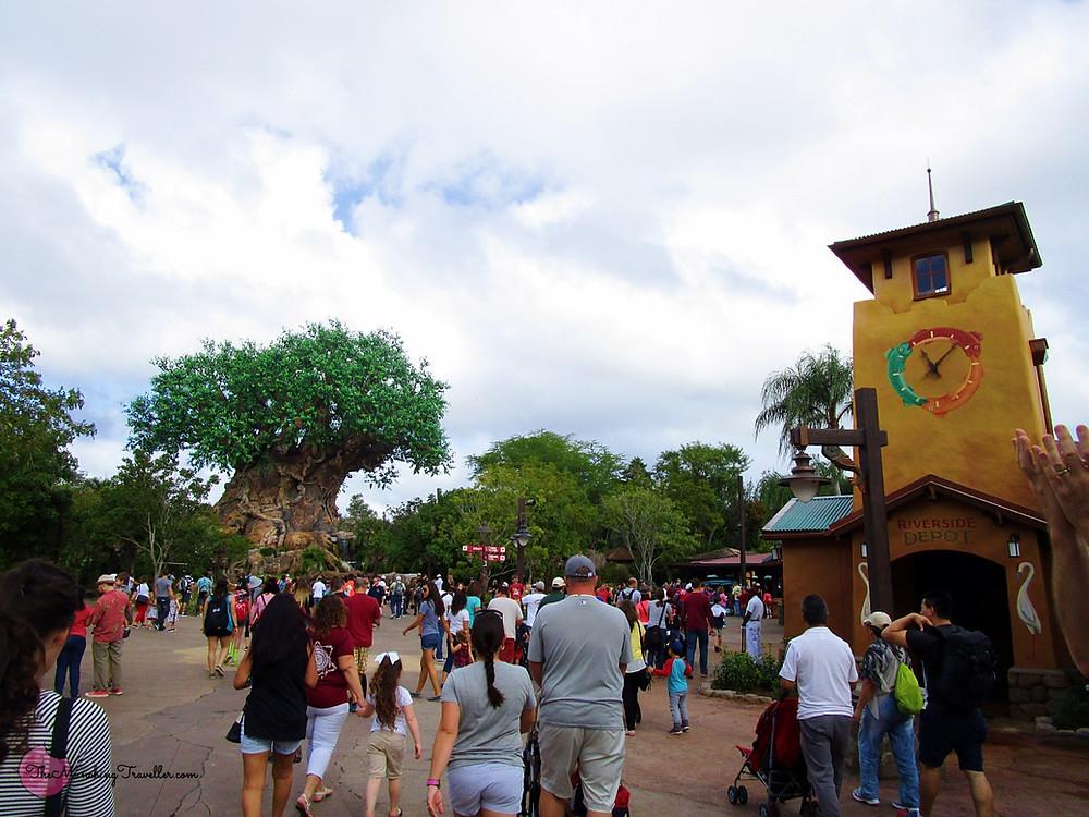 Disney's Animal Kingdom, Orlando