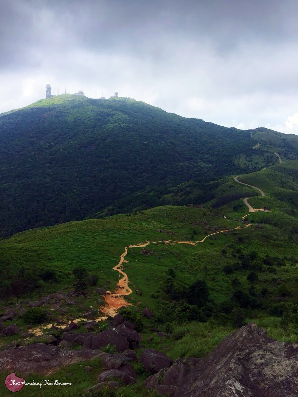 Hiking up Tai Mo Shan
