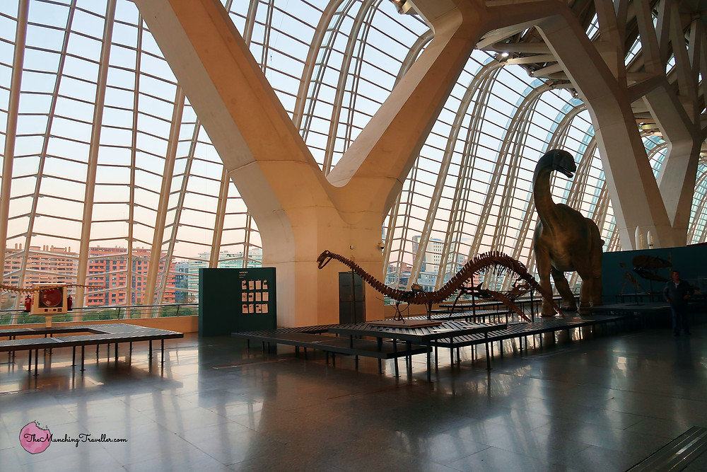 Science Museum (Museu de les Ciències Príncipe Felipe)