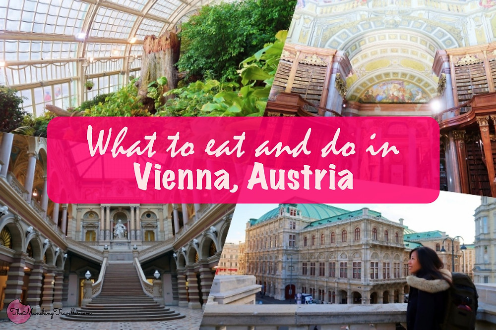 What to eat and do in Vienna, Austria