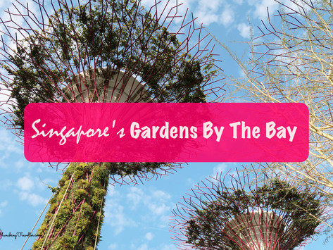 A day out at Gardens by the Bay, Singapore
